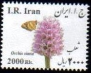 <font=54>New Issue #45, Medical Flowers, Orchis simia <p> <a href=&quot;/images/Iran-Scott-New-2015-45.jpg&quot;> <font color=green><b>View the image</font></a></font>